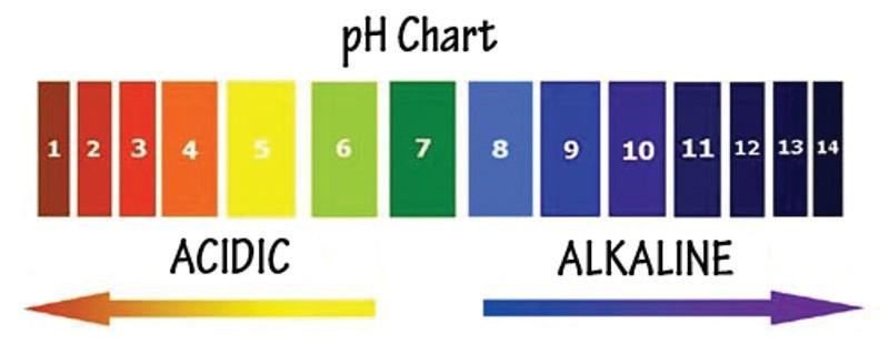 Graphique pH